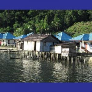 Rumah Papua