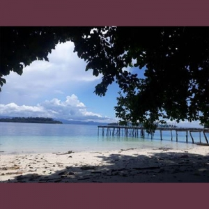 Foto Teluk Cendrawasih