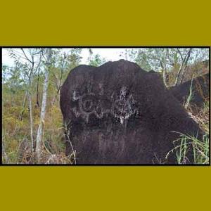 Motif kura-kura di sektor 2 Situs Megalitik Tutari