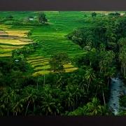 Foto karya Edy Utama Minangkabau Lanskap