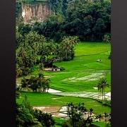 Foto Minangkabau Lanskap karya Edy Utama